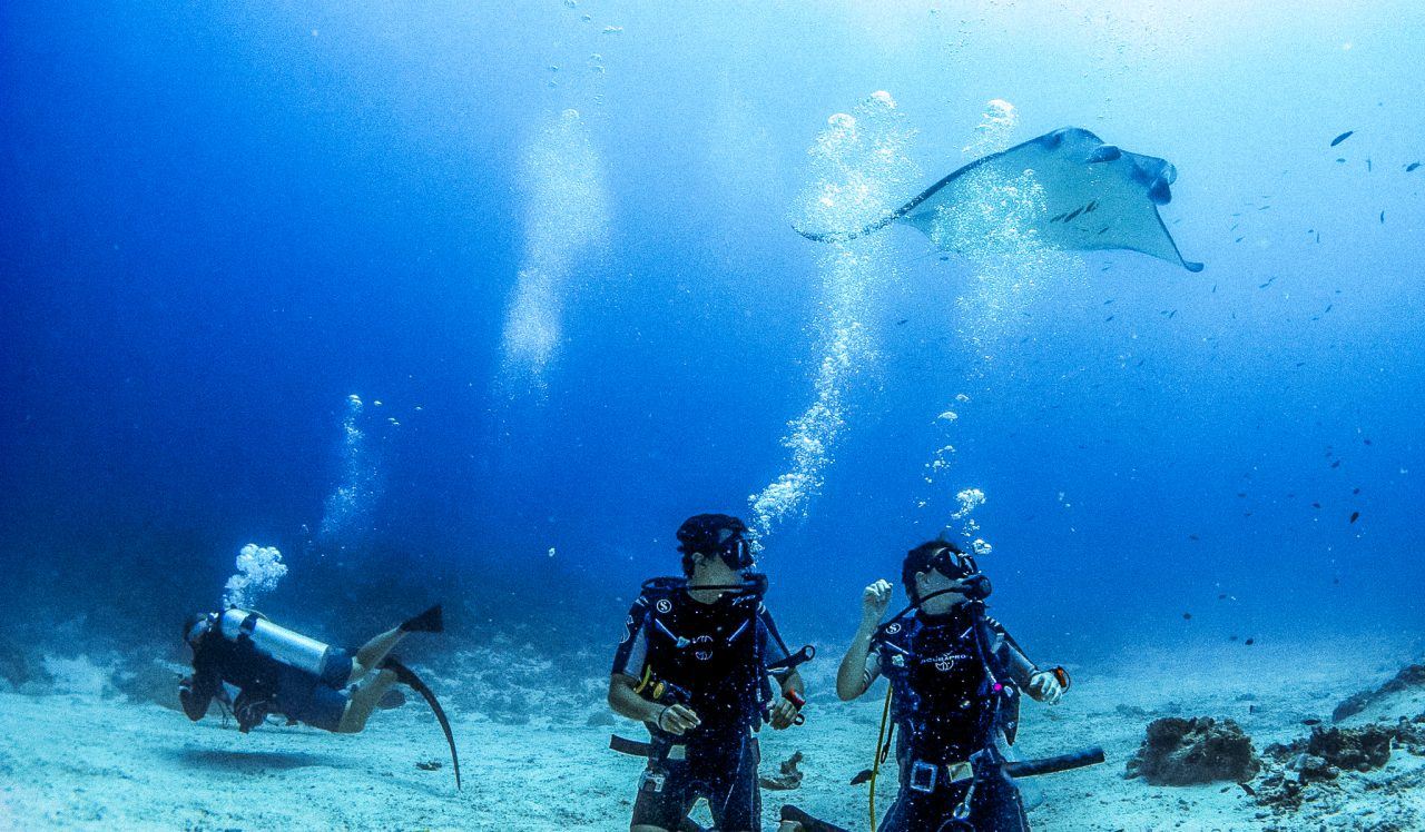 Slider DIVING - Diving - Manta 28